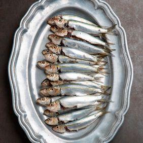 דגים ופירות ים
