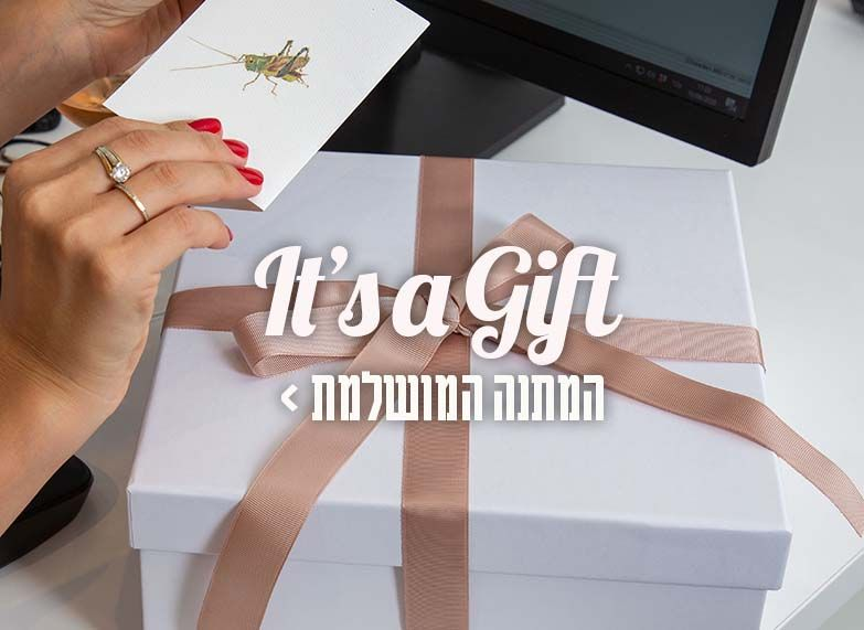 המתנות שלנו