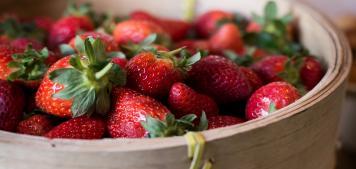 פרודוקטים של חורף: תותים