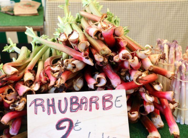 רובארב טרי בשוק מובר, פריז