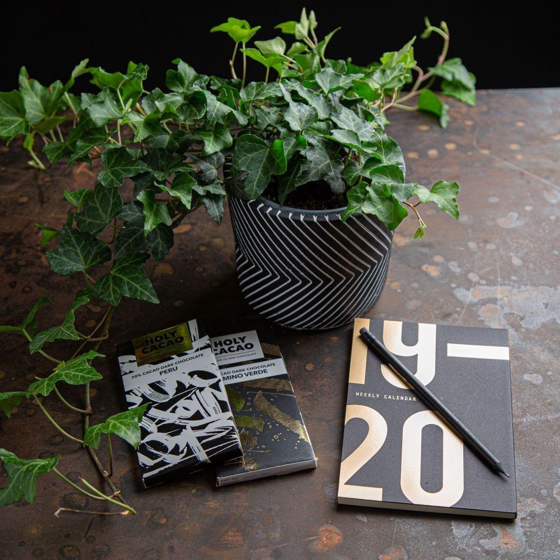 מארז התחלה מתוקה - יומן שבועי מעוצב, עציץ פרחים בתוך כלי חרס ו-2 חבילות שוקולד של הולי קקאו.