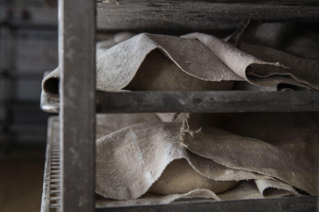 לחם גרמני של הבייקרי, בהתפחה