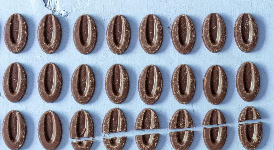 שוקולד של ולרונה. מחומרי הגלם הפופולריים בבייקרי